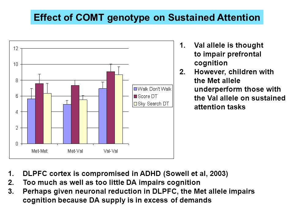 Effect of COMT genotype on Sustained Attention