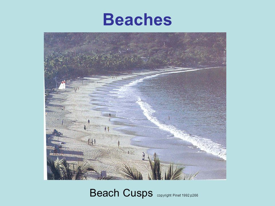 Beaches Beach Cusps copyright Pinet 1992 p266