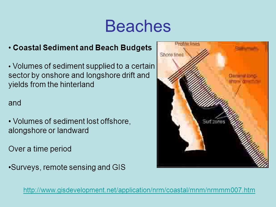 Beaches Coastal Sediment and Beach Budgets and