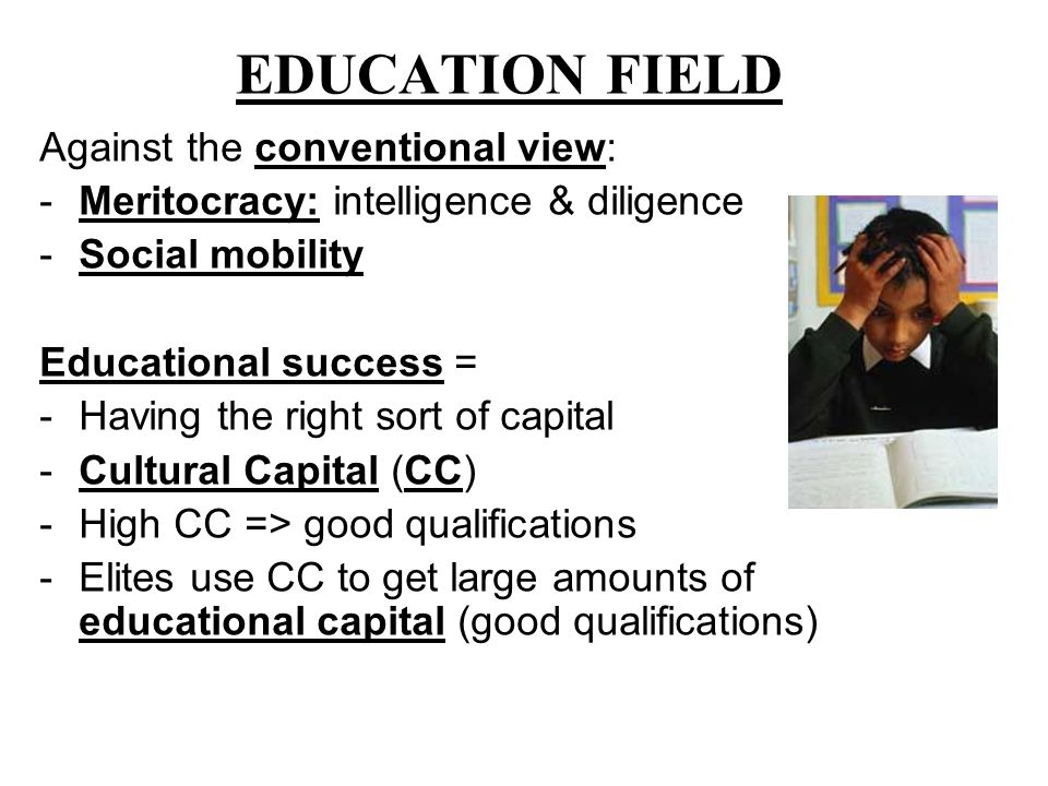 EDUCATION FIELD Against the conventional view: