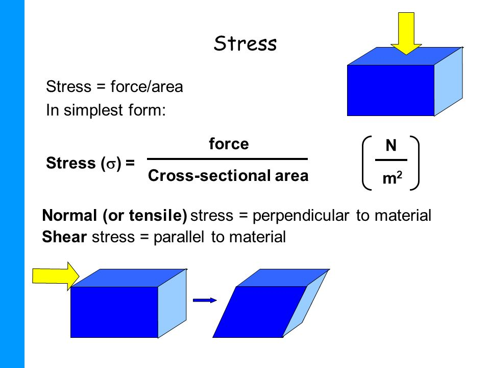 Stress Stress = force/area In simplest form: force N Stress () =
