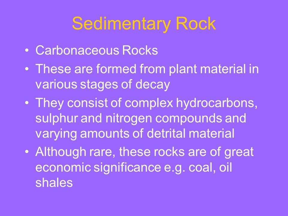 Sedimentary Rock Carbonaceous Rocks