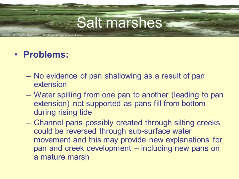 Salt marshes Problems: