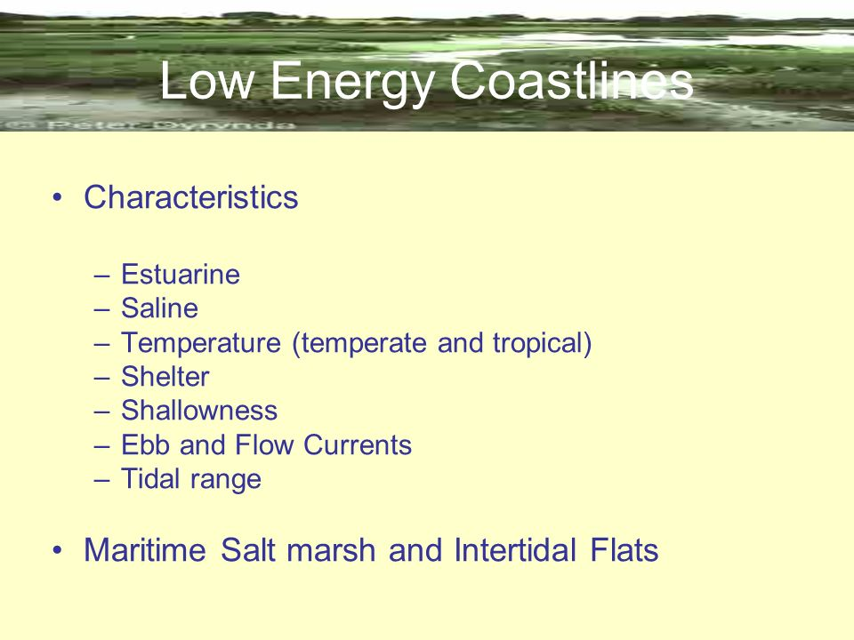 Low Energy Coastlines Characteristics