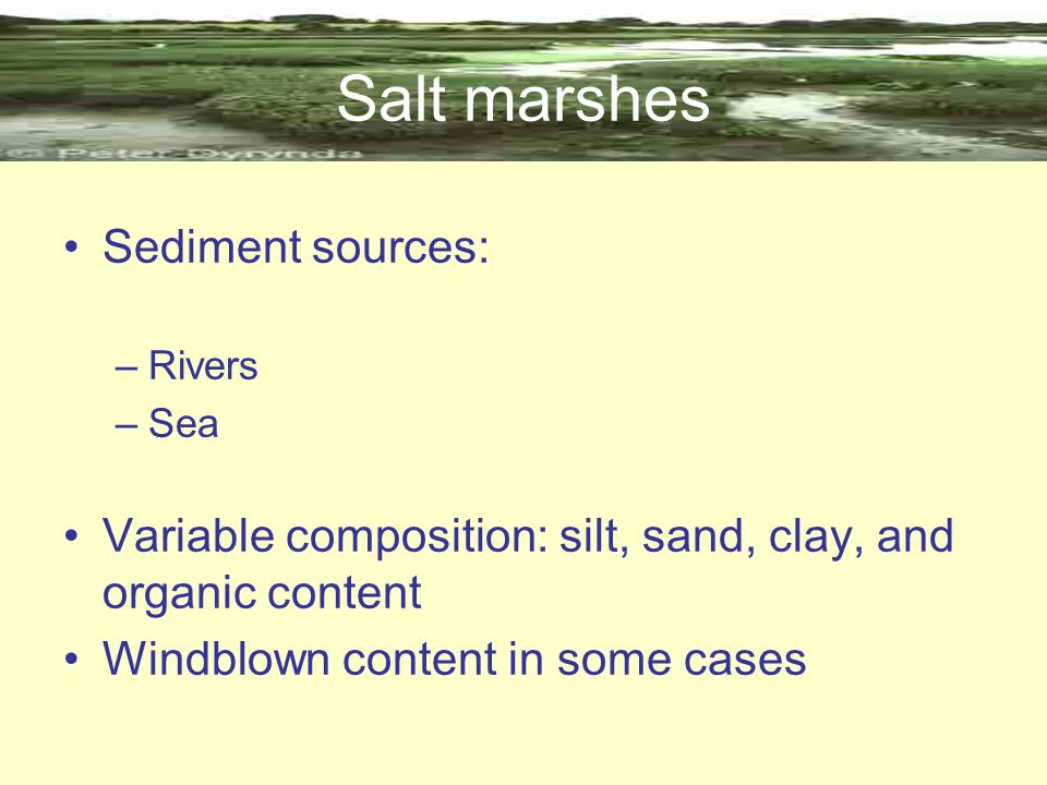 Salt marshes Sediment sources: