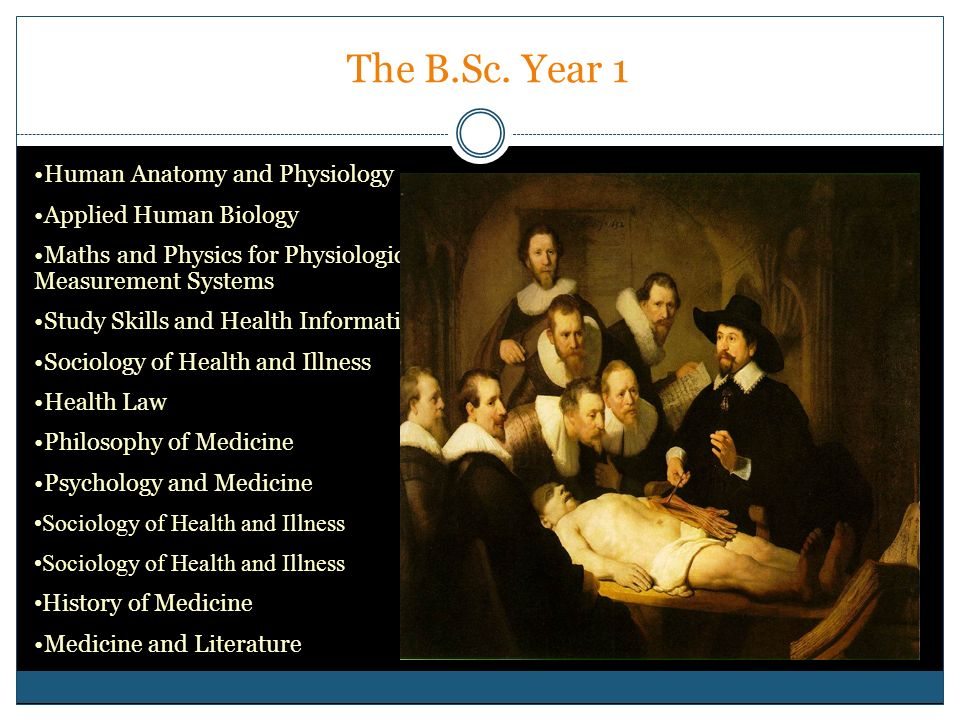 The B.Sc. Year 1 Human Anatomy and Physiology Applied Human Biology