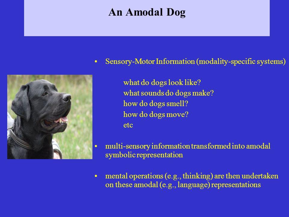 An Amodal Dog Sensory-Motor Information (modality-specific systems)
