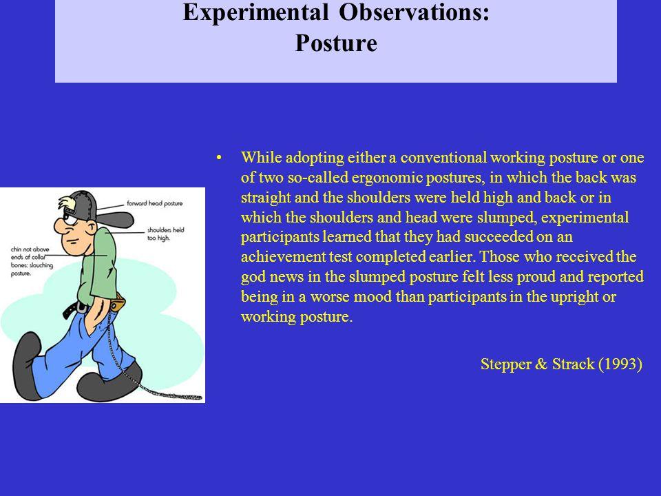 Experimental Observations: Posture