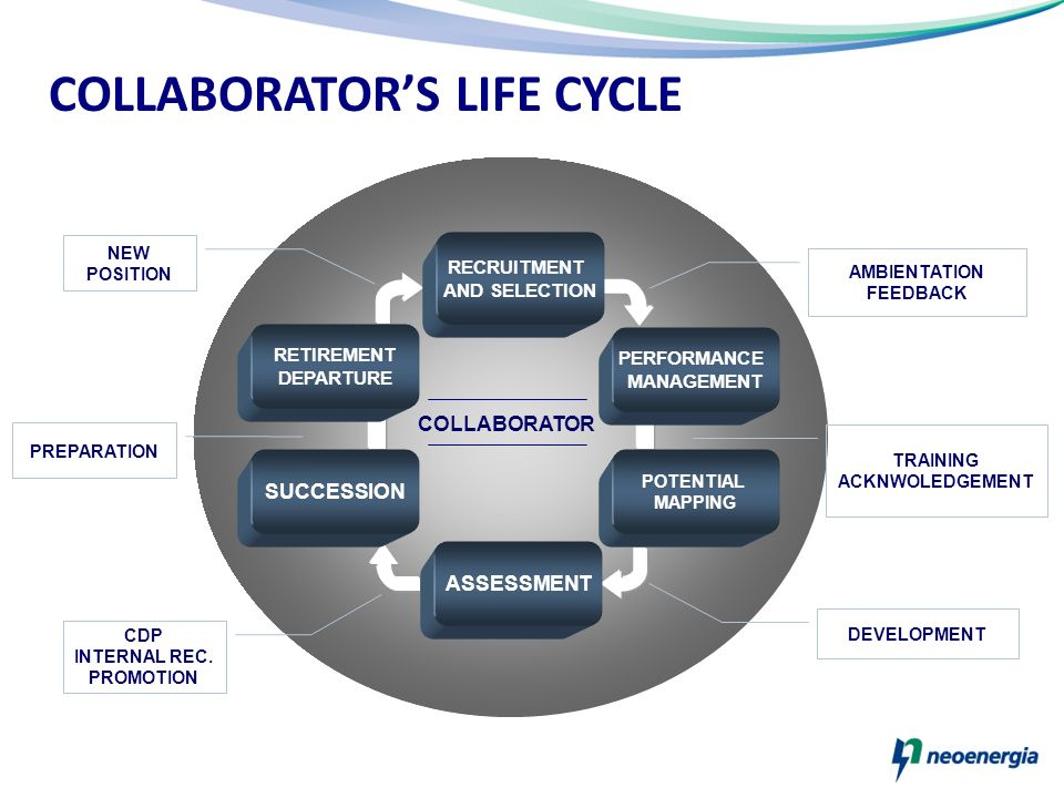 COLLABORATOR'S LIFE CYCLE