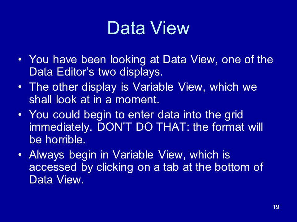 Data View You have been looking at Data View, one of the Data Editor's two displays.
