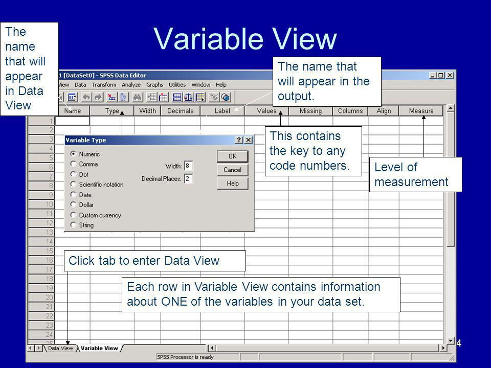 Variable View The name that will appear in Data View