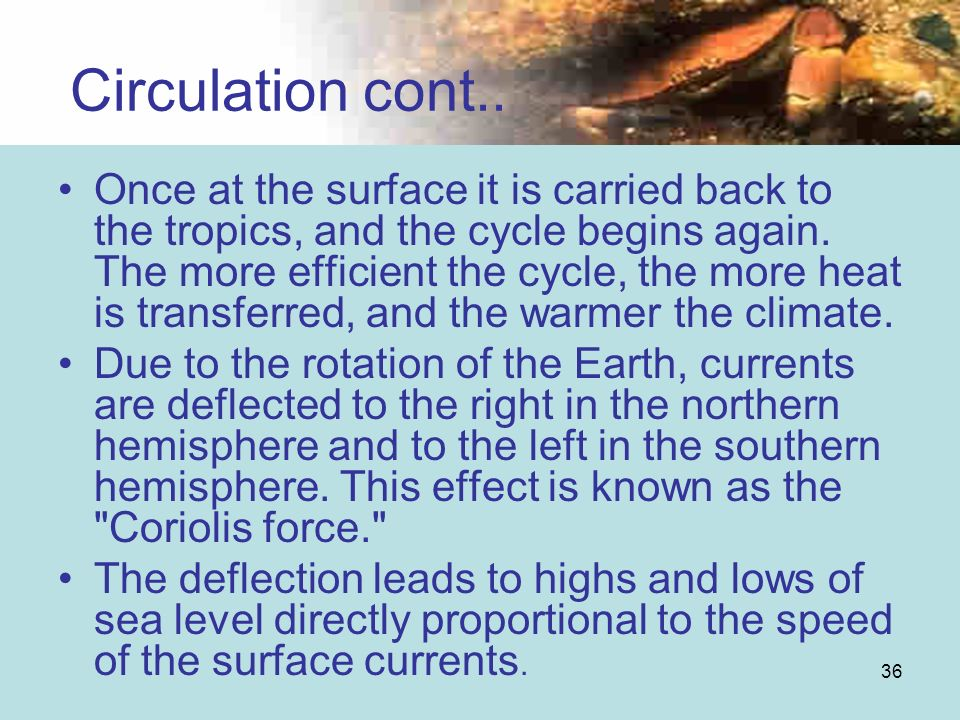 Circulation cont..