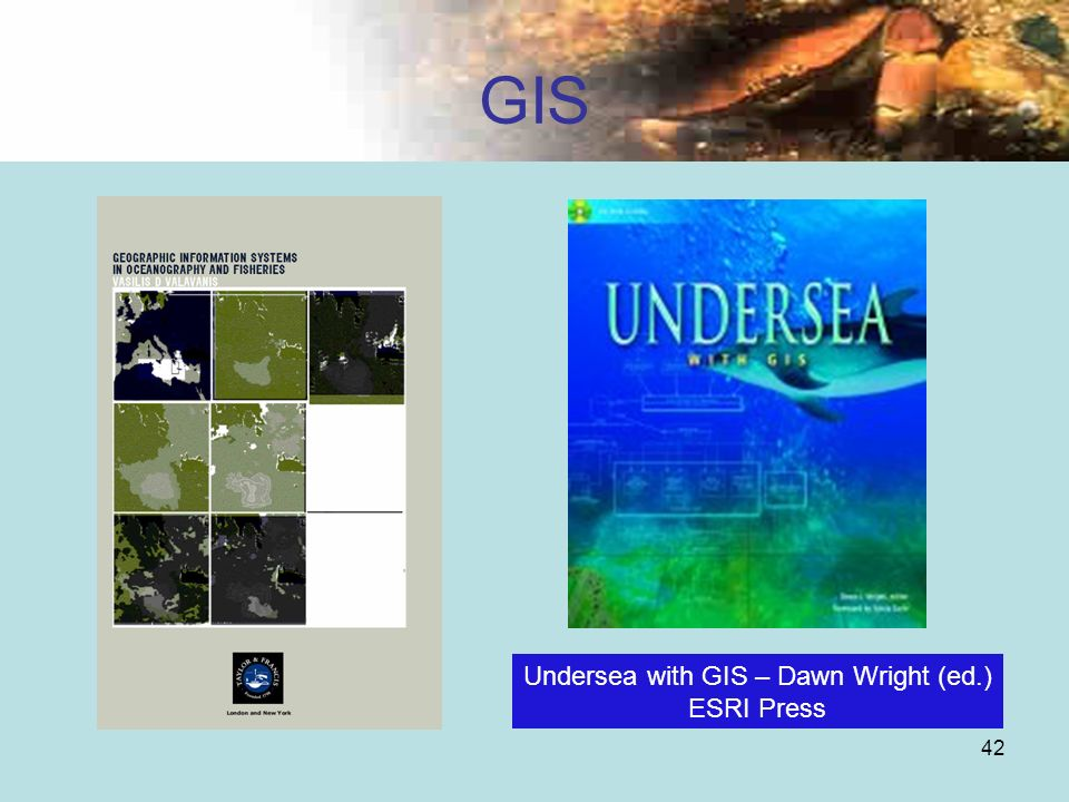 Undersea with GIS – Dawn Wright (ed.)