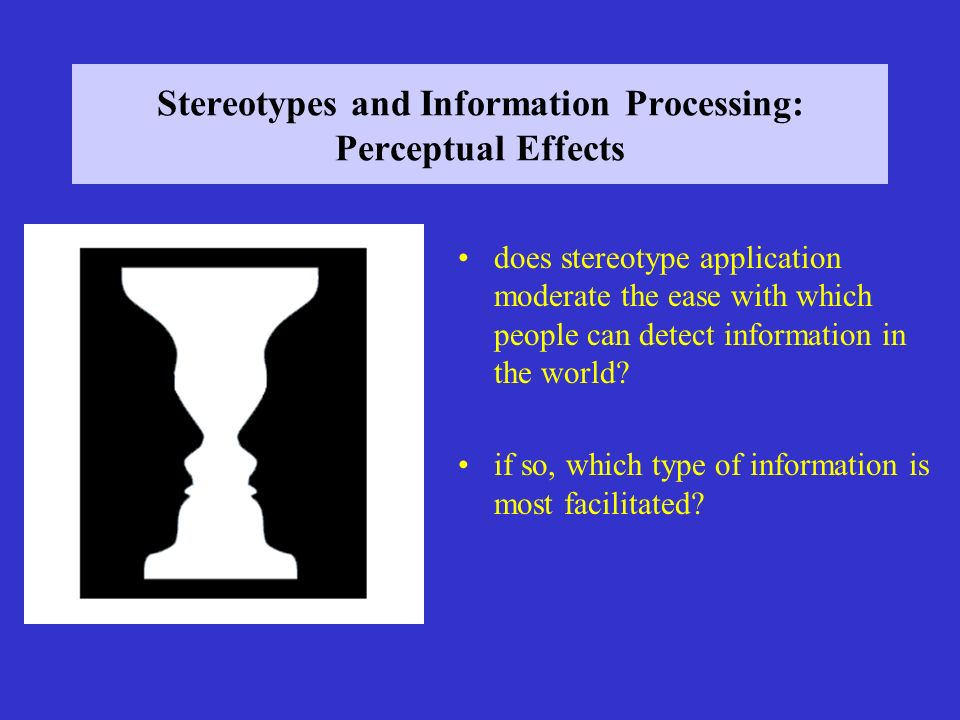 Stereotypes and Information Processing: Perceptual Effects