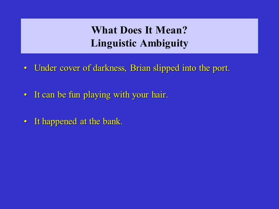 What Does It Mean Linguistic Ambiguity