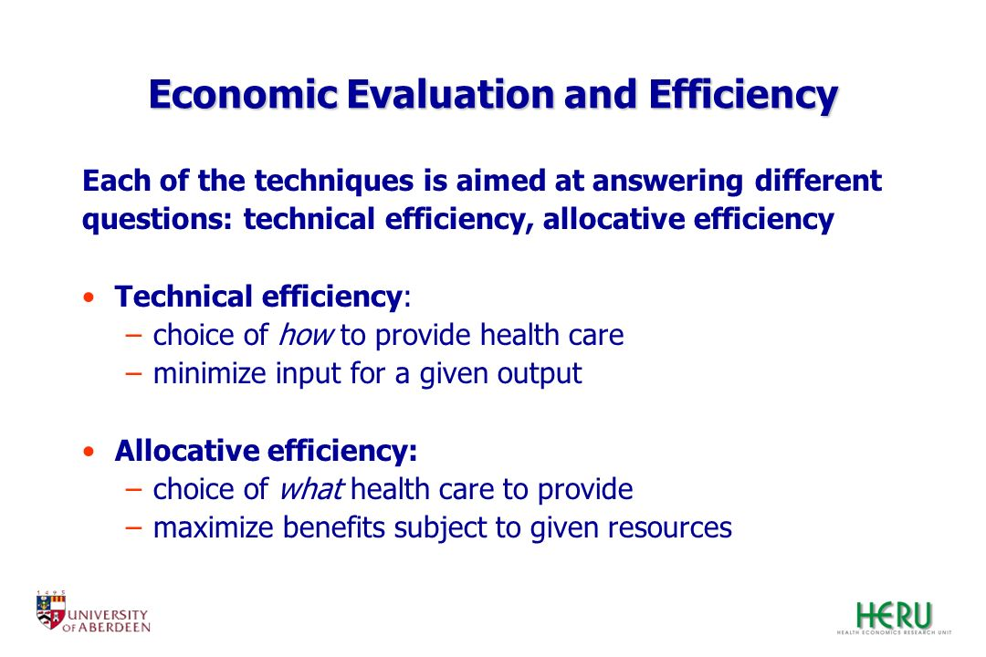Economic Evaluation and Efficiency