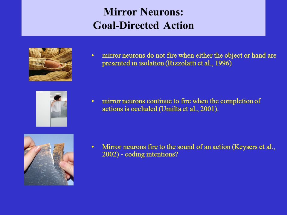 Mirror Neurons: Goal-Directed Action