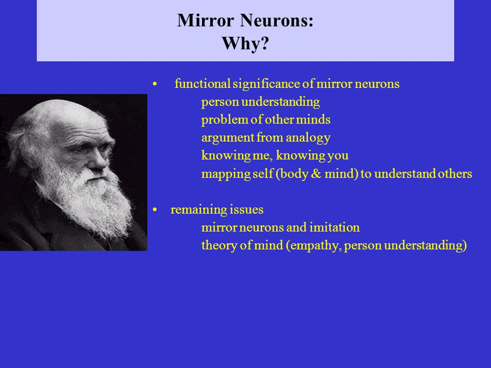 Mirror Neurons: Why functional significance of mirror neurons
