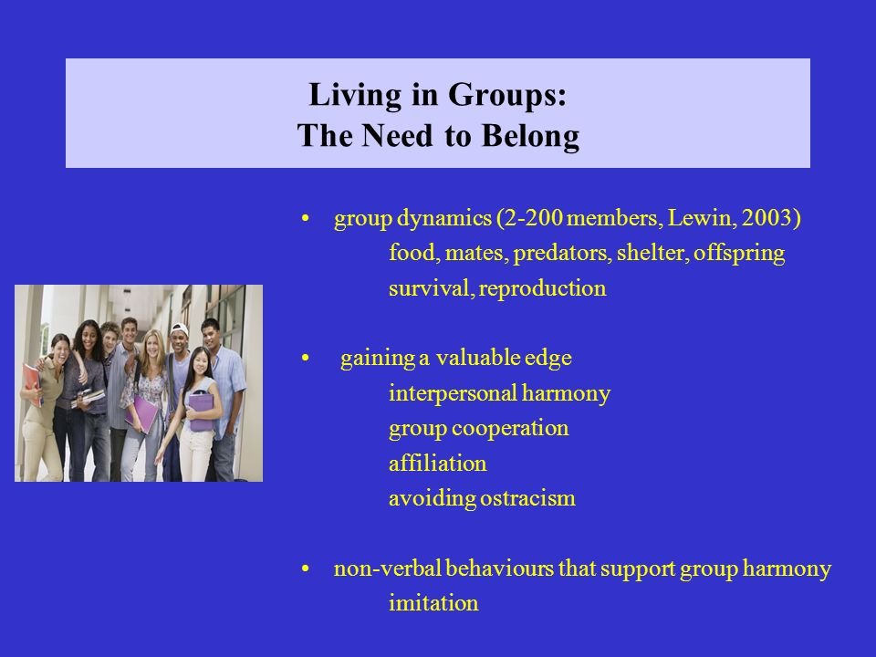 Living in Groups: The Need to Belong