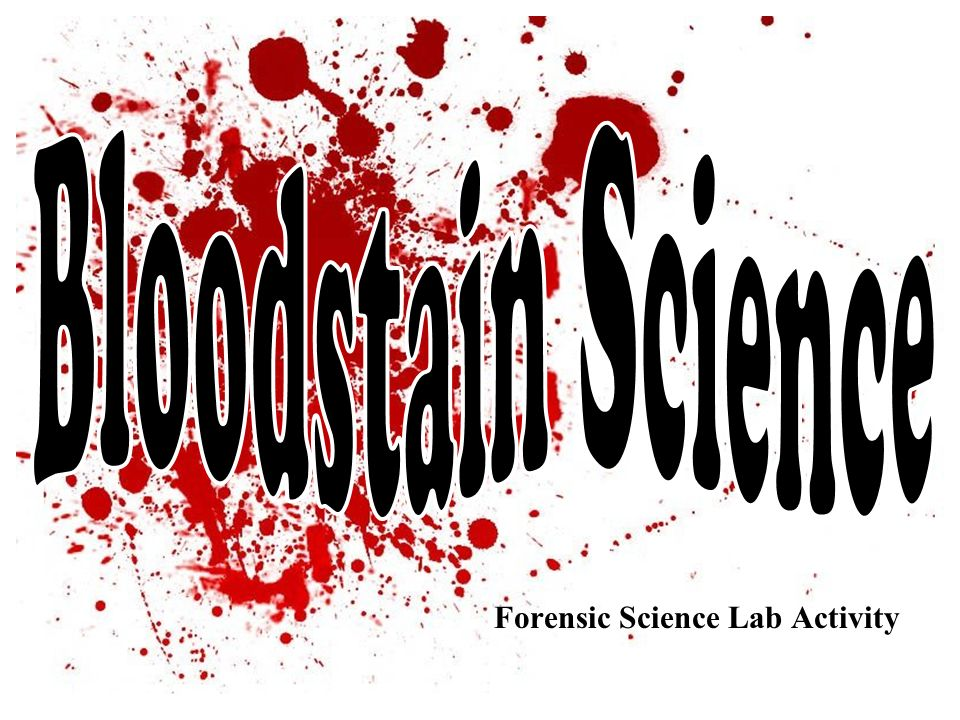 Forensic Science Lab Activity  Ppt Download. Car Insurance Bakersfield Consulting It Firms. Display Banners For Trade Shows. Debt Collection Franchise Dish Network Locals. Clicker Garage Door Opener Change Code. Texting Software For Pc Local Business Owners. Rocky Mountain University Of Health Professions. Tx Electricity Providers Storage In Charlotte. Shipping Freight To Hawaii New Dvt Treatment
