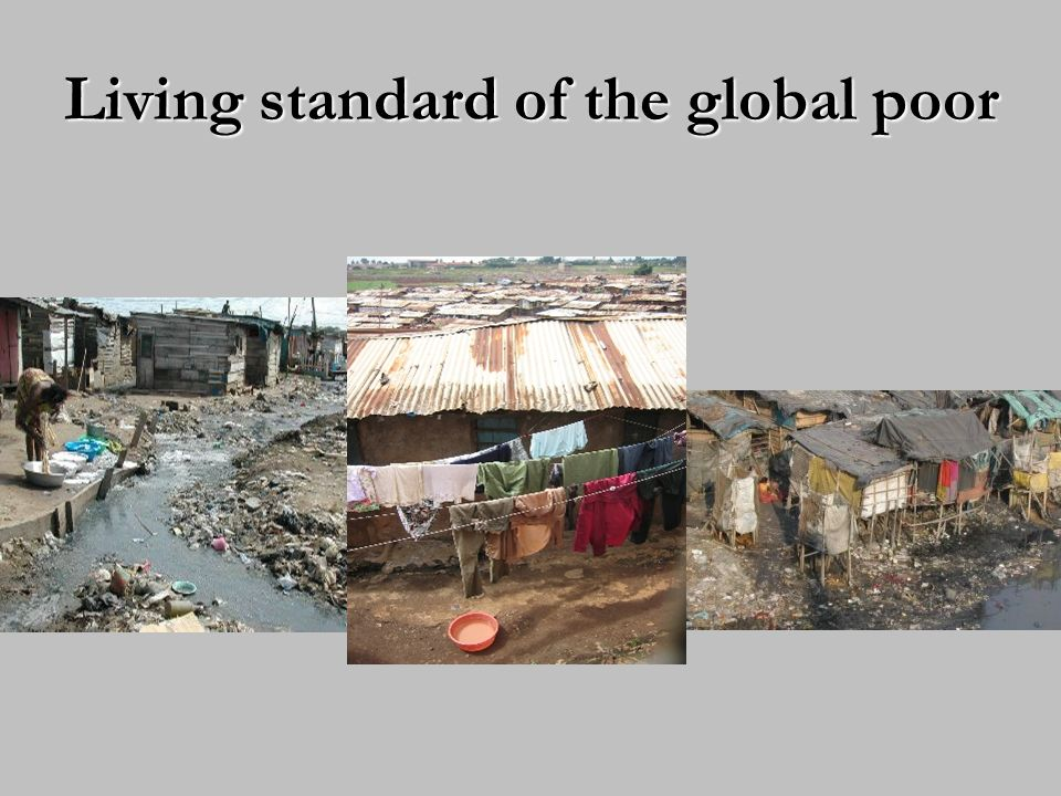 Living standard of the global poor