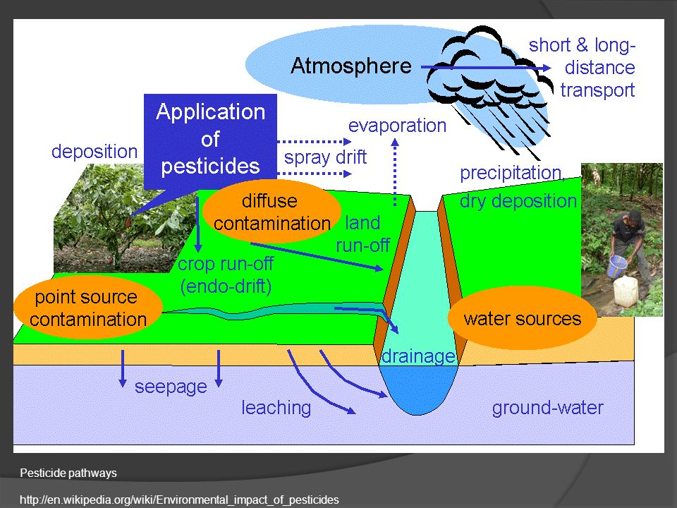 Ch.5. Agriculture & Environment Most of this lecture is ... | 960 x 720 jpeg 144kB