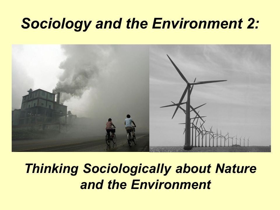 Sociology and the Environment 2: