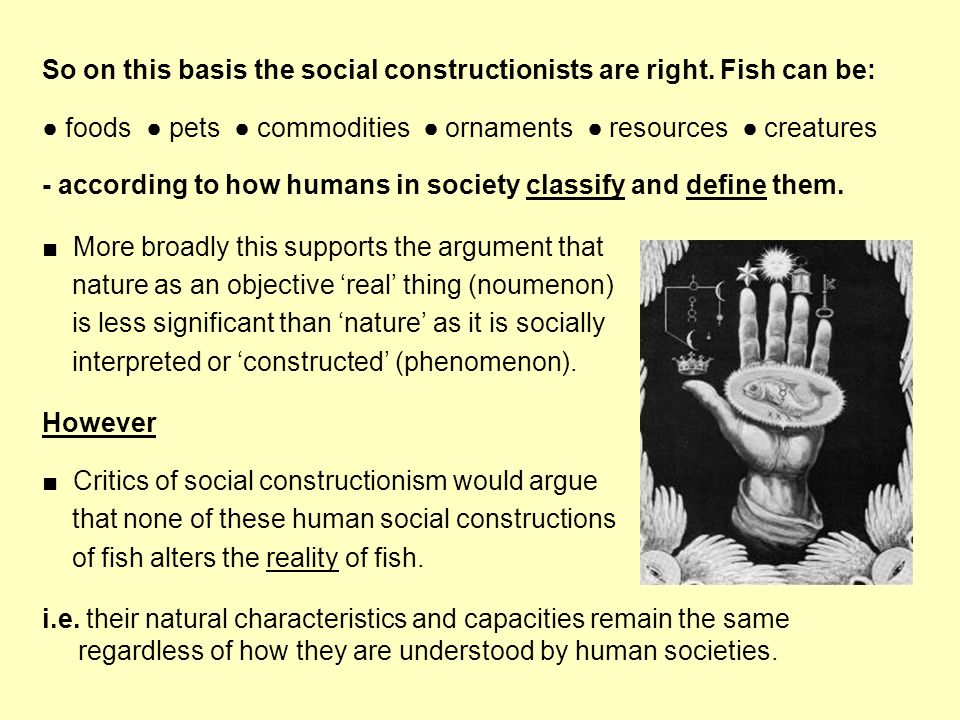 So on this basis the social constructionists are right. Fish can be: