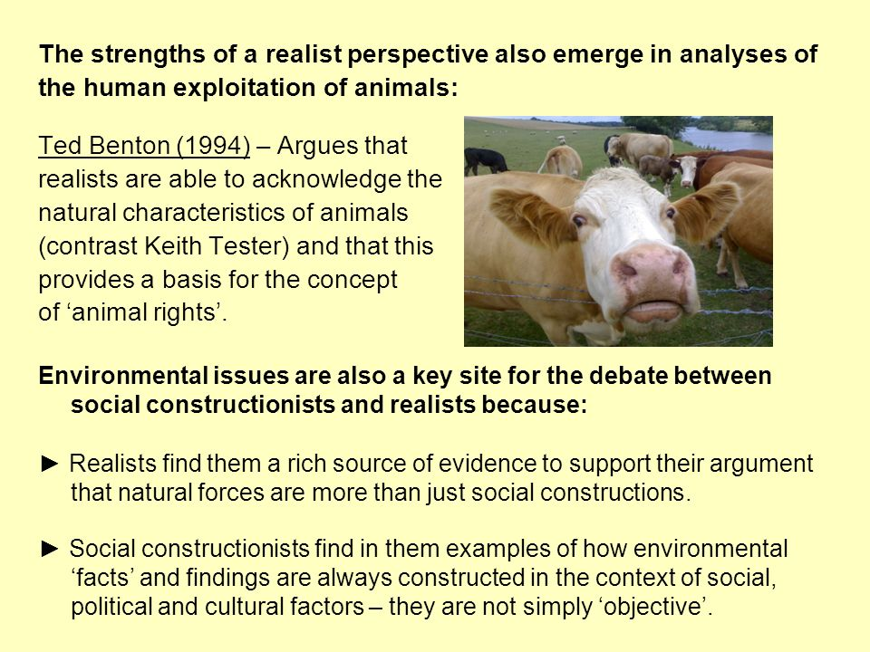 The strengths of a realist perspective also emerge in analyses of