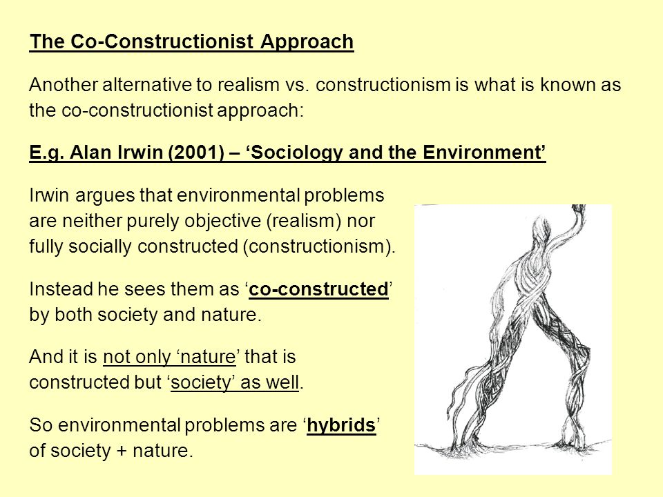 The Co-Constructionist Approach