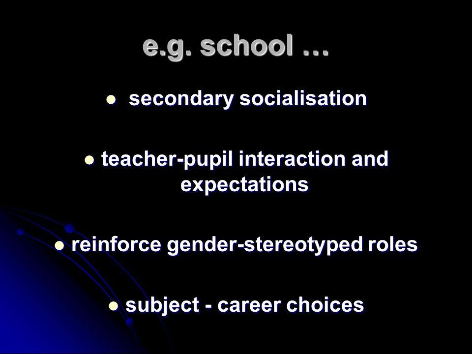 e.g. school … secondary socialisation