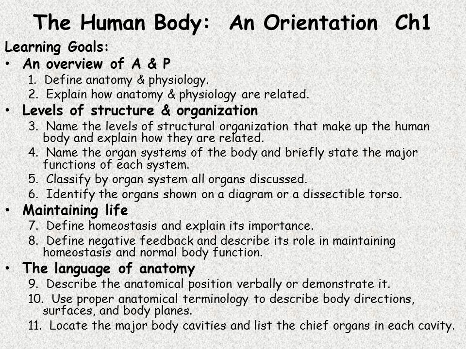 the human body  an orientation ch1