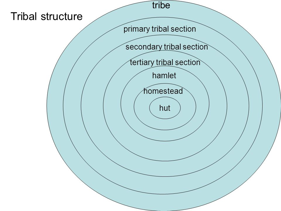 Tribal structure tribe primary tribal section secondary tribal section