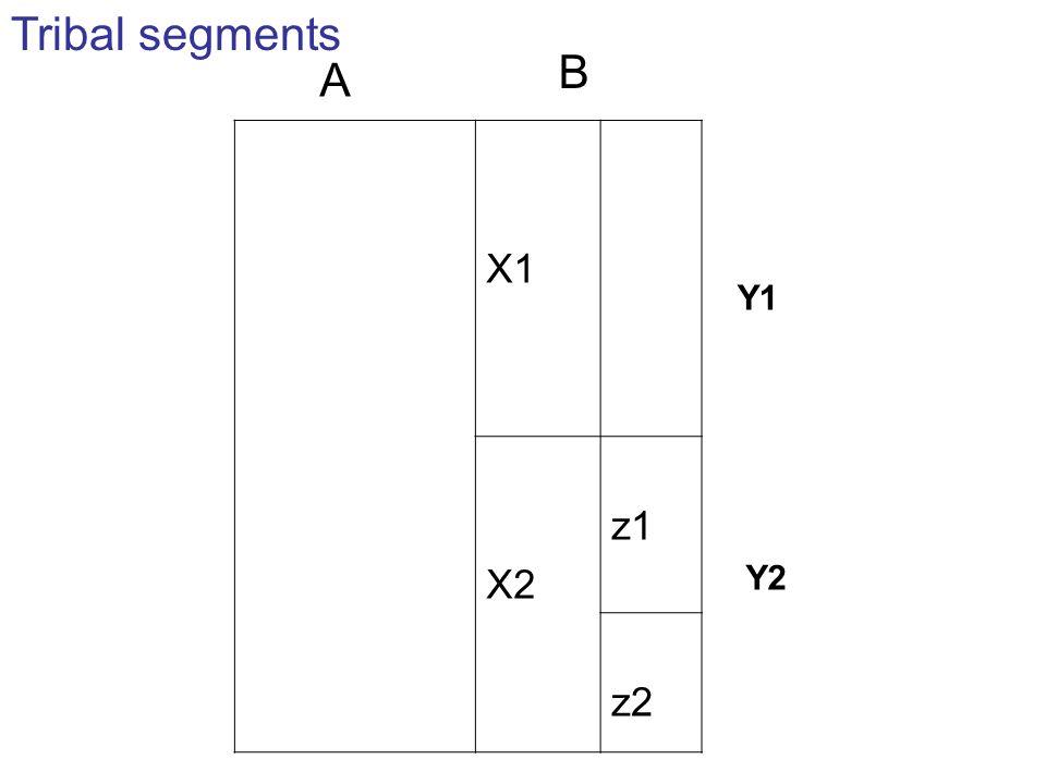 Tribal segments B A X1 X2 z1 z2 Y1 Y2