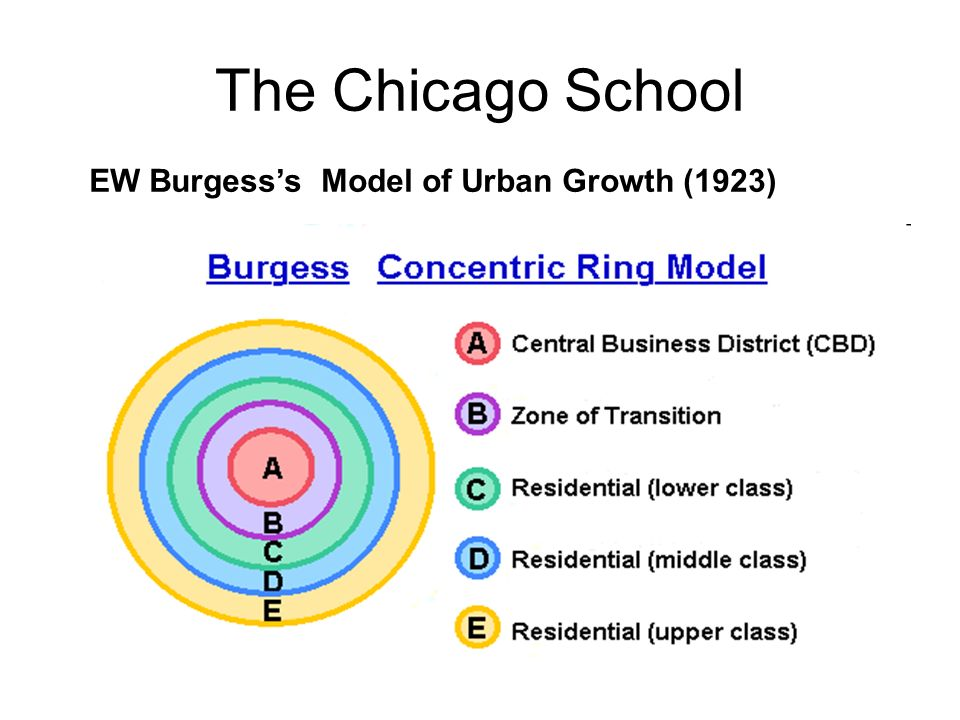 The Chicago School EW Burgess's Model of Urban Growth (1923)