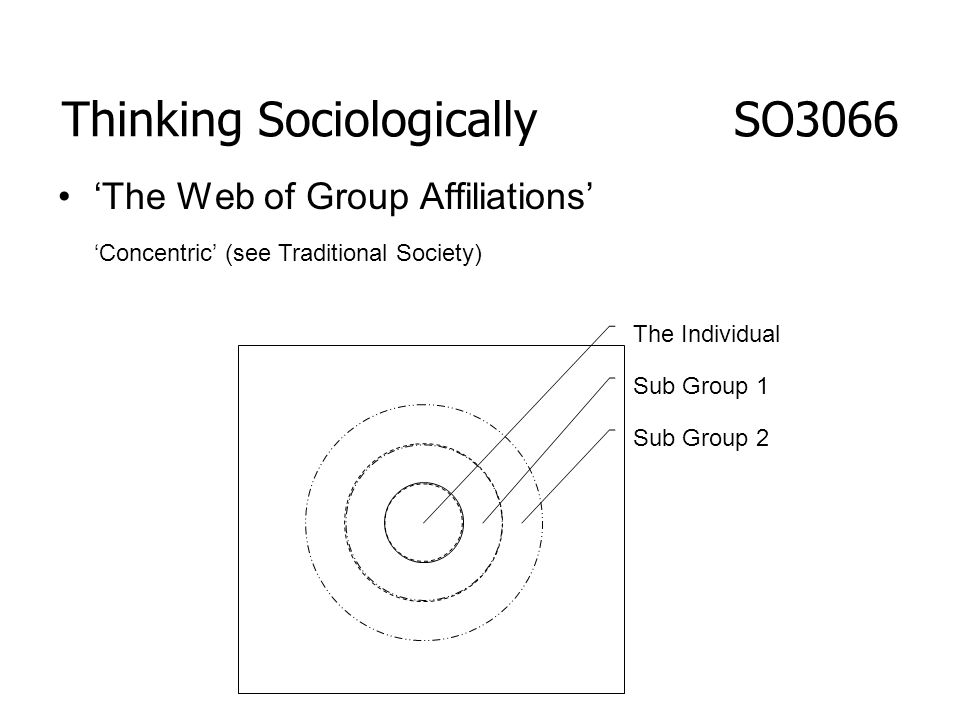 Thinking Sociologically SO3066