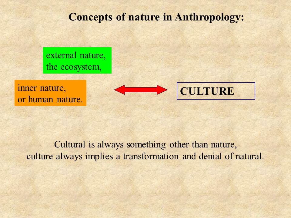 Concepts of nature in Anthropology: