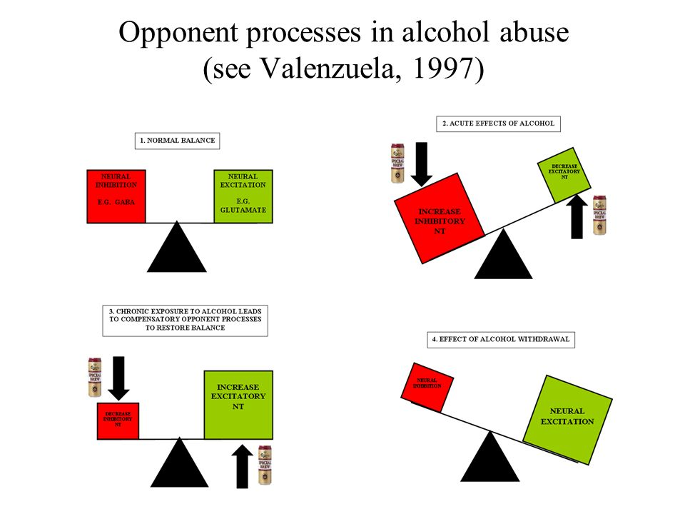 Opponent processes in alcohol abuse (see Valenzuela, 1997)