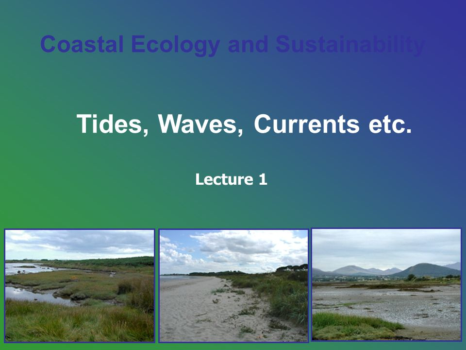 Coastal Ecology and Sustainability
