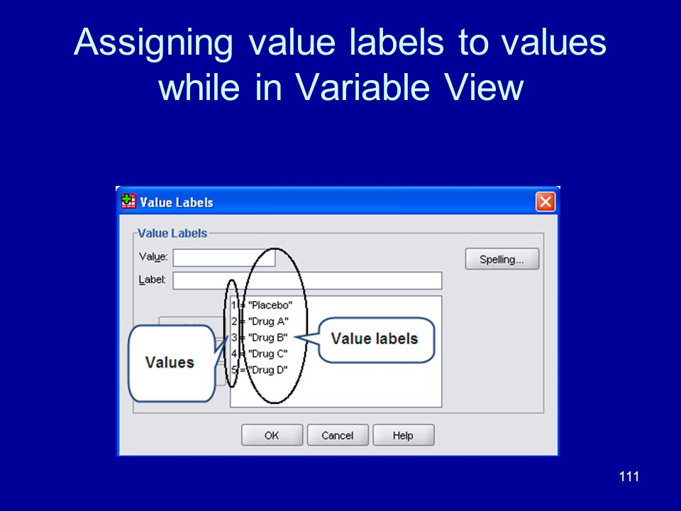 Assigning value labels to values while in Variable View