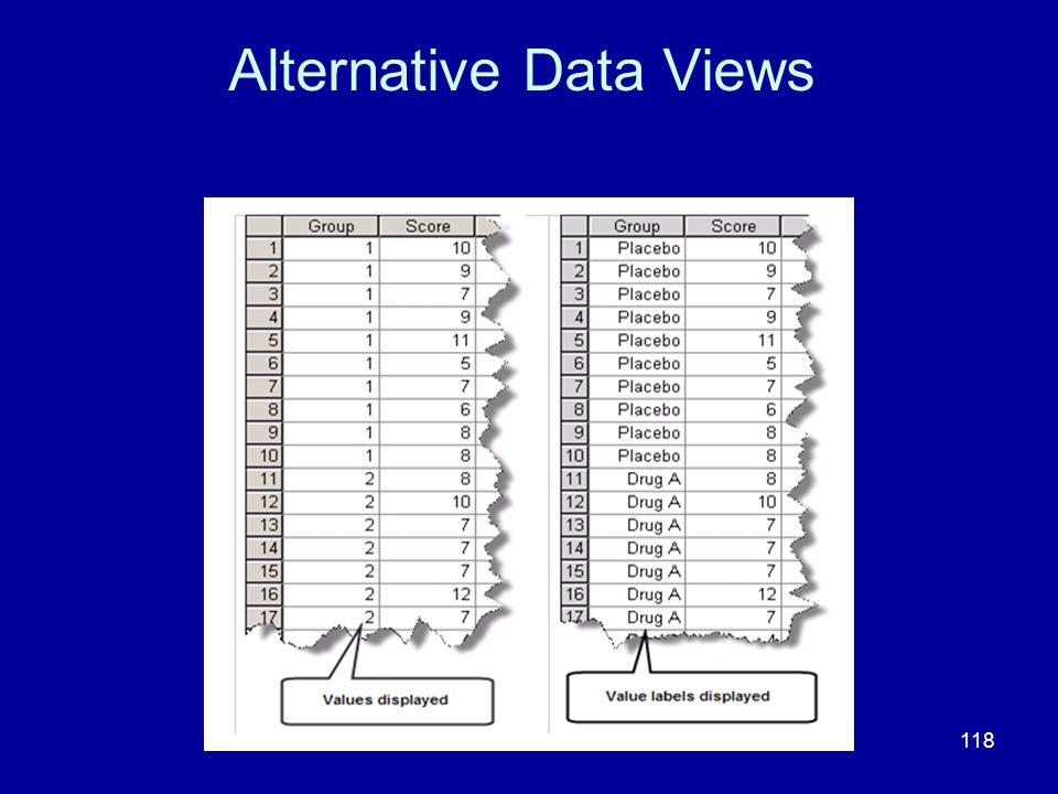 Alternative Data Views