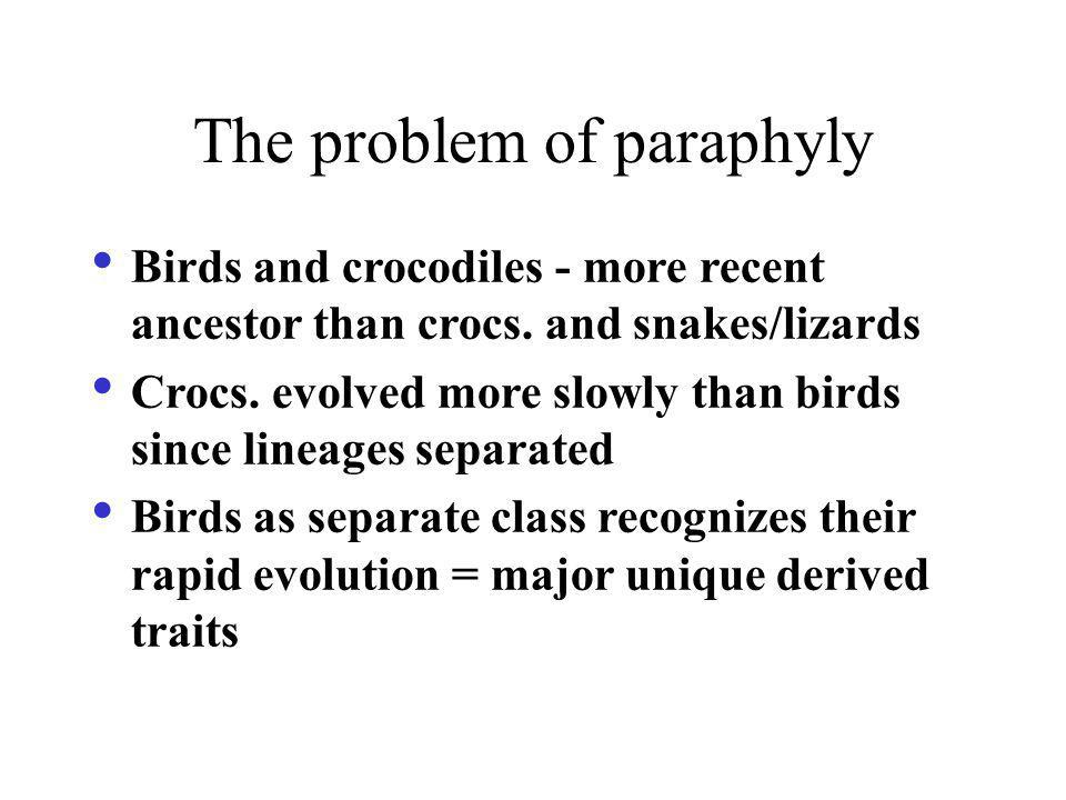 The problem of paraphyly