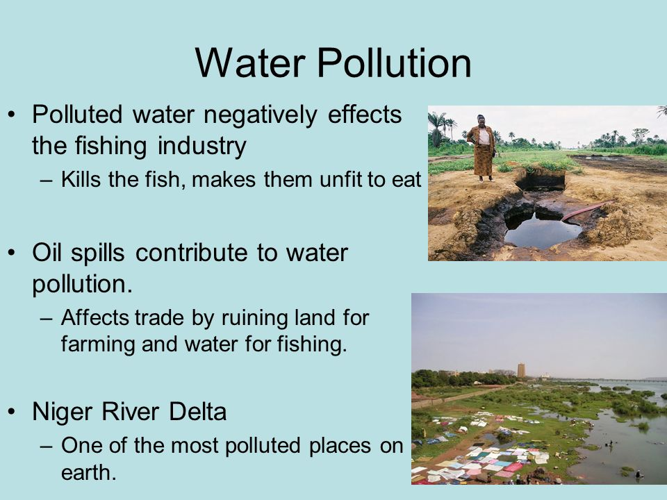 Water pollution and its effects on