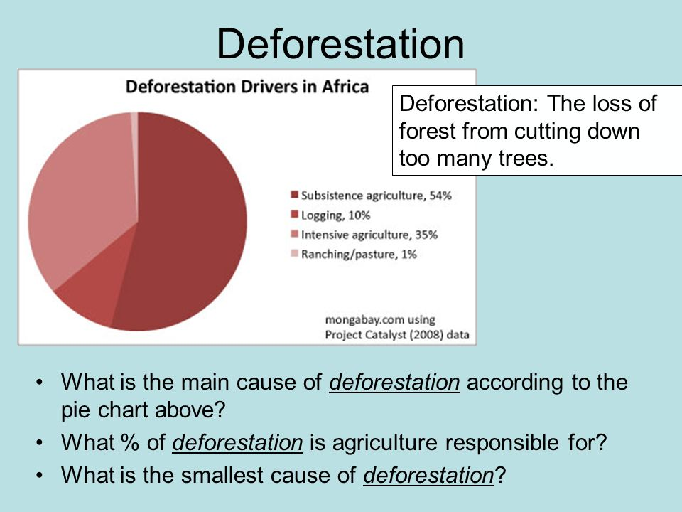 the major problem of deforestation in russia Deforestation in the brazilian  opening of new roads and migration of people to unexploited areas are all major causes of amazon deforestation  land use in the.