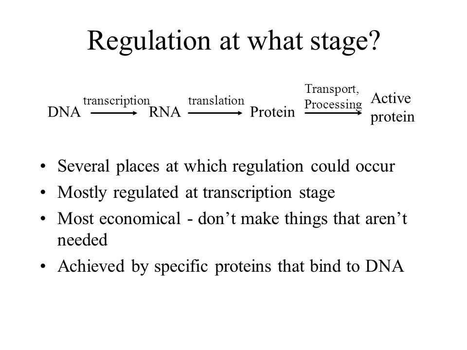 Regulation at what stage