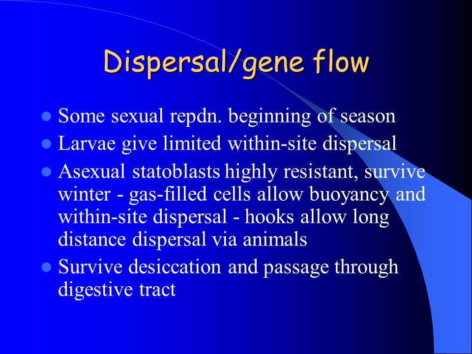Dispersal/gene flow Some sexual repdn. beginning of season
