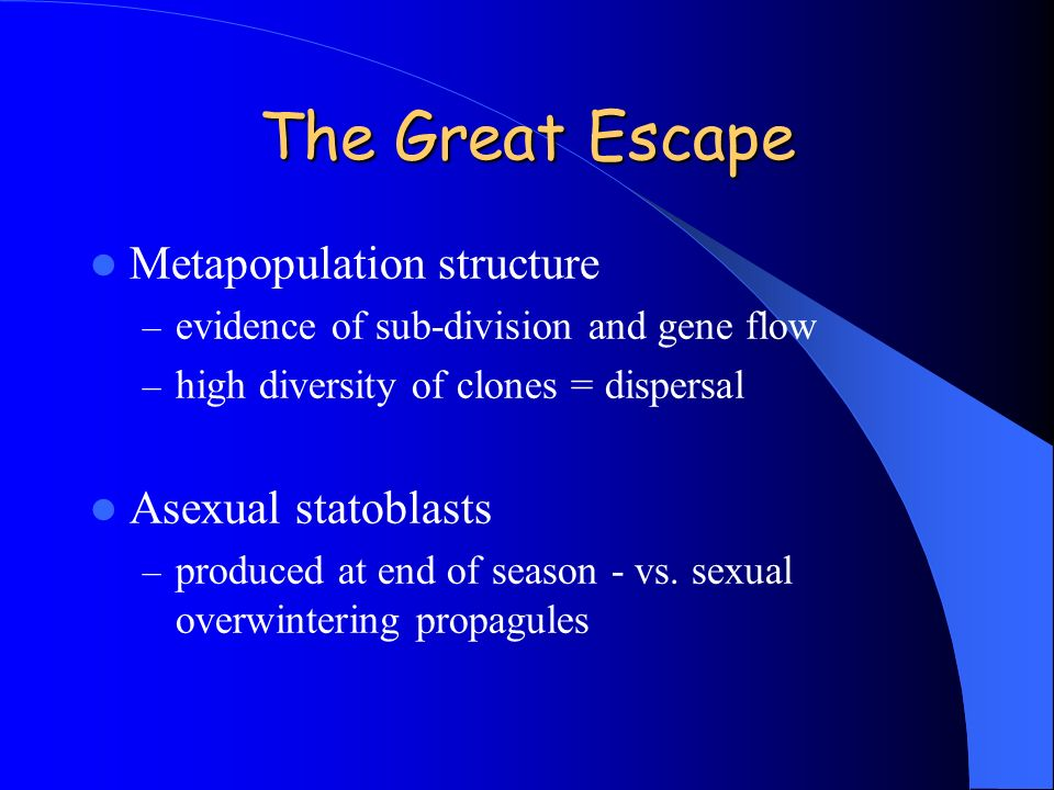 The Great Escape Metapopulation structure Asexual statoblasts