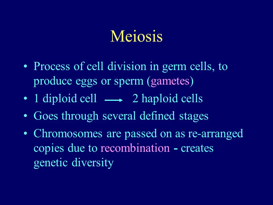 Meiosis Process of cell division in germ cells, to produce eggs or sperm (gametes) 1 diploid cell 2 haploid cells.