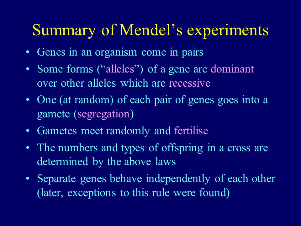 Summary of Mendel's experiments