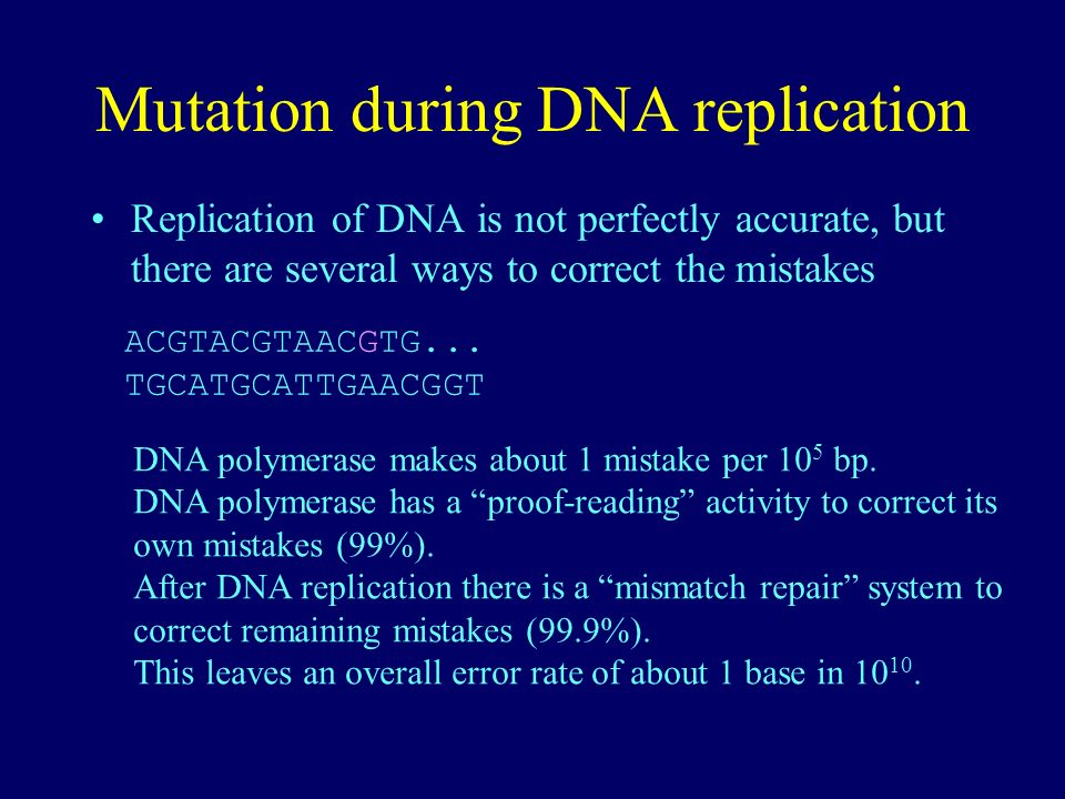 Mutation during DNA replication